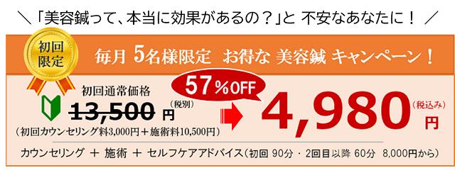 しんきゅうコンパス美容鍼5