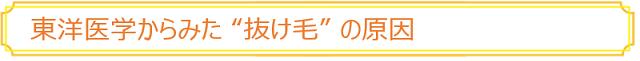 """東洋医学からみた """"抜け毛"""" の原因"""
